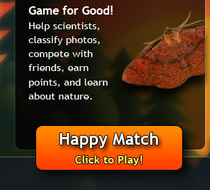 Check out Happy Match!